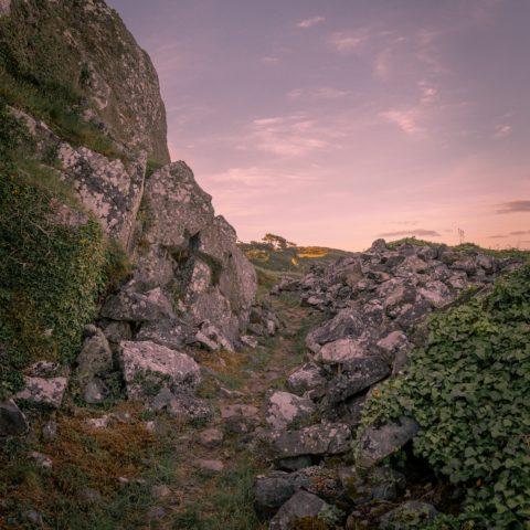 dawn-dusk-environment-1478418