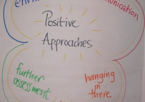 Positive Approaches (BBarol)